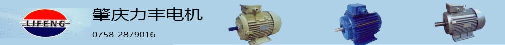 肇庆市力丰电机有限公司-Y2系列三相异步电动机
